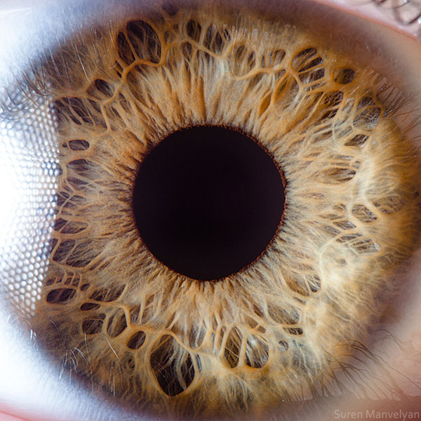 extreme close up of human eye macro suren manvelyan 19 21 Extreme Close Ups of the Human Eye
