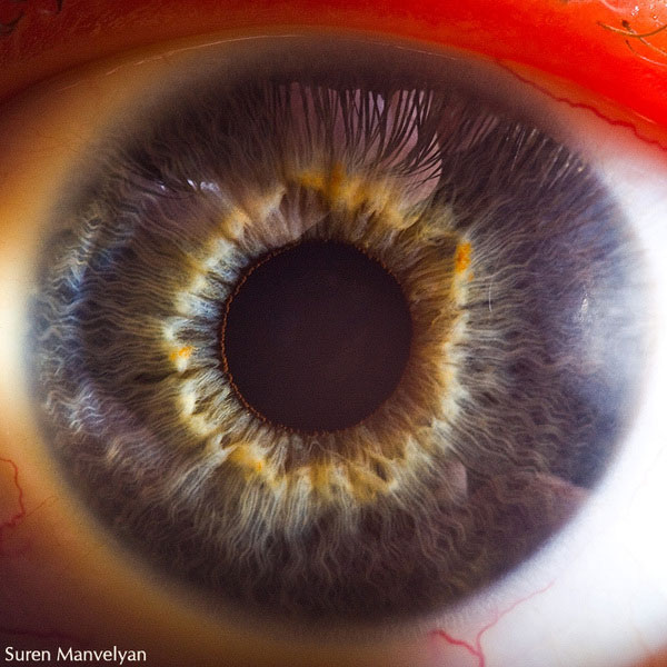 extreme close up of human eye macro suren manvelyan 4 21 Extreme Close Ups of the Human Eye