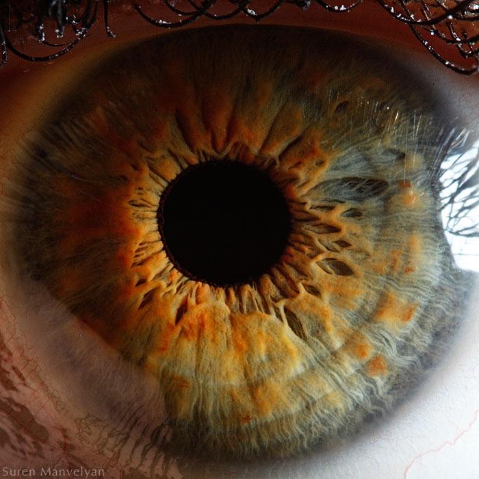 extreme close up of human eye macro suren manvelyan 6 21 Extreme Close Ups of the Human Eye
