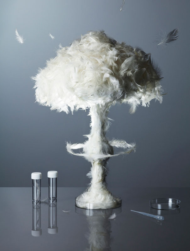 mushroom cloud made from feathers kyle bean Inventive Hand Crafted Art by Kyle Bean