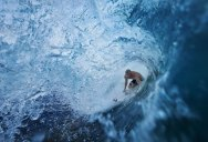 Picture of the Day: Barrel Fever