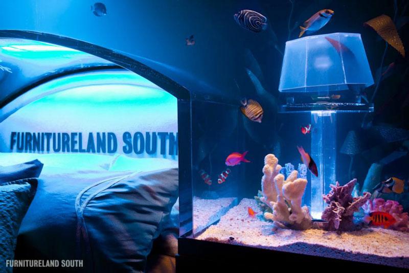 fish tank headboard above bed furnitureland south 1 Cool Custom Fish Tank Headboard for your Bed