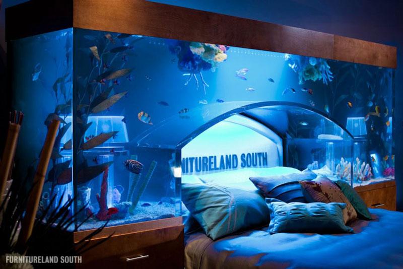 fish tank headboard above bed furnitureland south 2 Cool Custom Fish Tank Headboard for your Bed