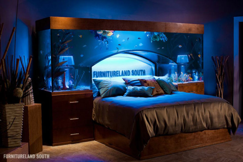 fish tank headboard above bed furnitureland south 4 Cool Custom Fish Tank Headboard for your Bed