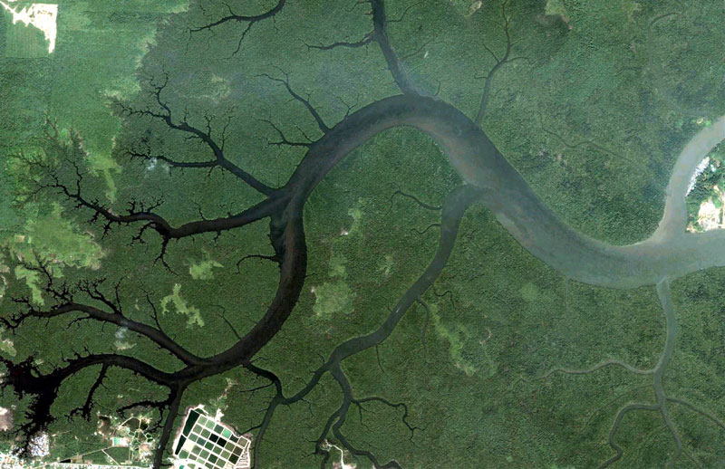 kuching malaysia google earth fractals Fractal Patterns in Nature Found on Google Earth