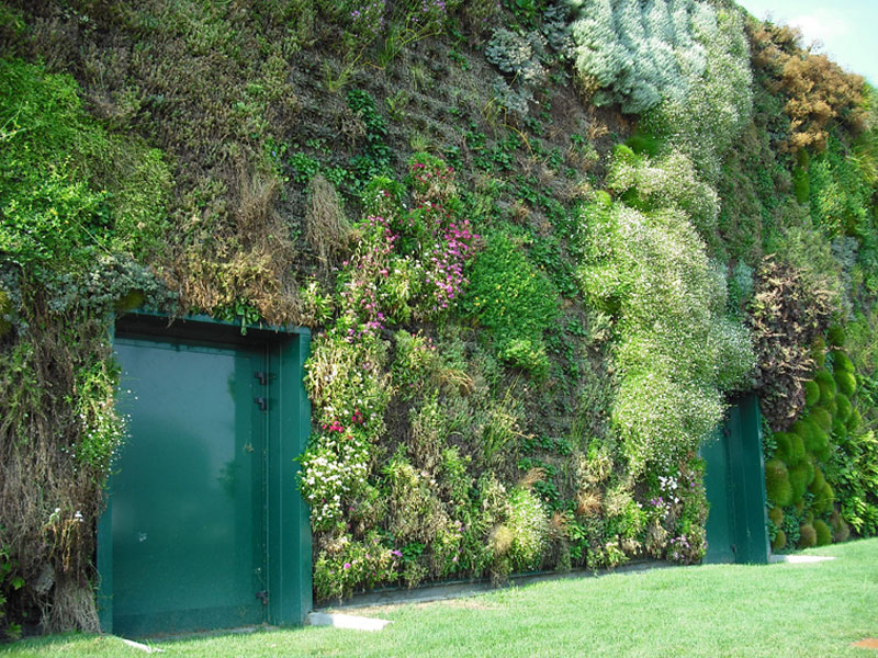 largest vertical garden in the world rozzano italy shopping center 4 The Largest Vertical Garden in the World