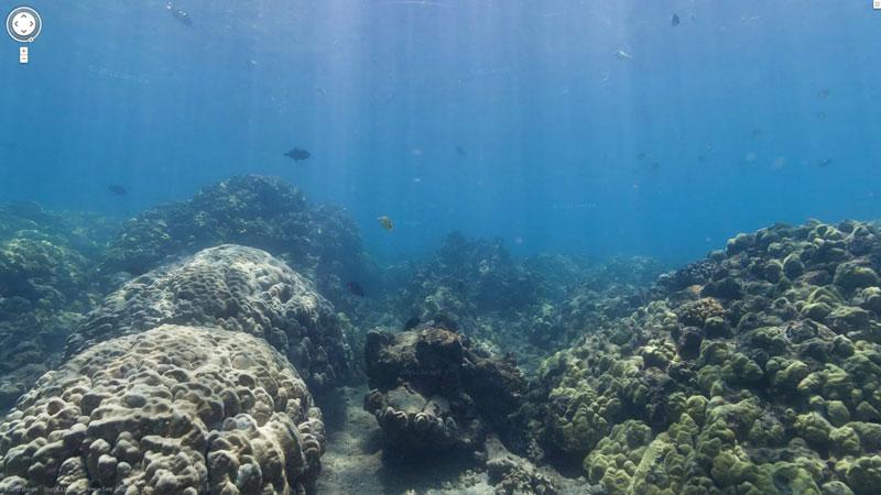 oahu honolulu hawaii hanauma bay google maps street view Google Adds First Underwater Panoramas to Maps and Street View