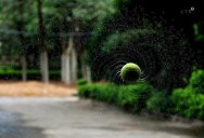 Picture of the Day: Top Spin