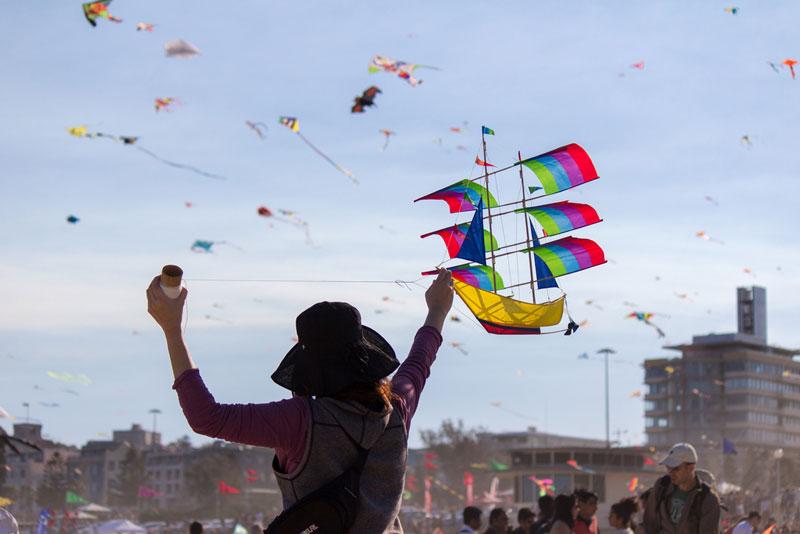 bondi beach festival of the winds 2012 australia The Amazing Kites at the Bondi Beach Festival of the Winds