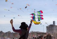 The Amazing Kites at the Bondi Beach Festival of the Winds