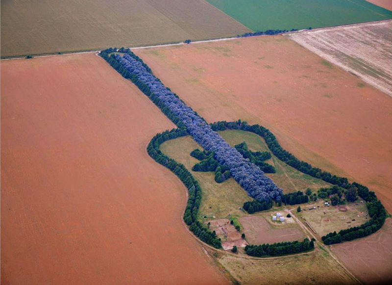 man plants guitar shaped forest for wife in pampas argentina 5 Artists Battle with Alzheimers Documented Through Gripping Self Portraits