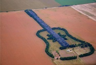 Man Plants Guitar Shaped Forest in Memory of His Wife