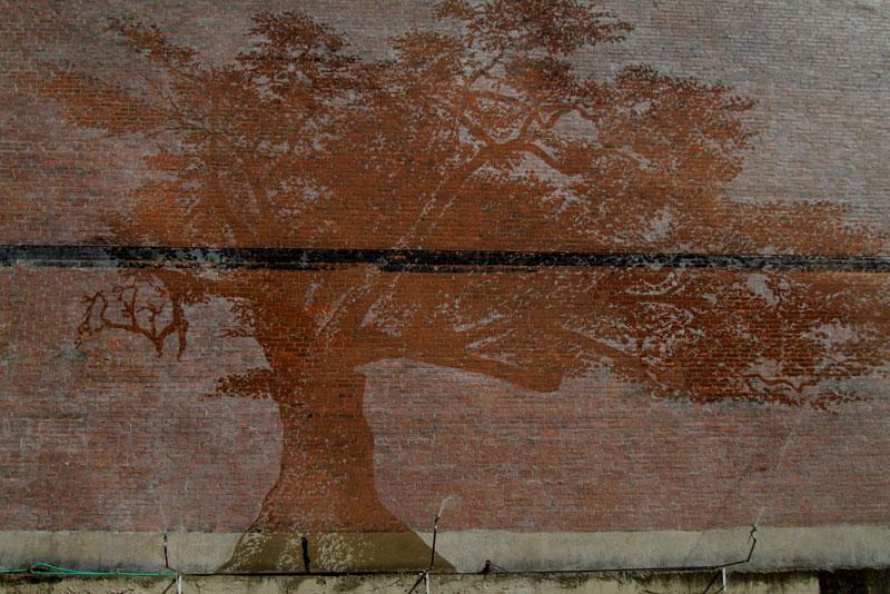 water activated oak tree mural adam niklewicz hartford ct 6 Reverse Graffiti: Washing Walls to Create Art