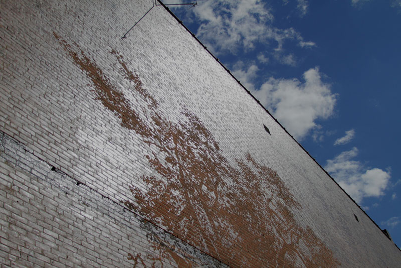 water activated oak tree mural adam niklewicz hartford ct 8 The Water Activated Oak Tree Mural in Hartford