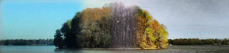 capturing the four seasons in one picture on an island lake springfield illinois 5 Capturing the Four Seasons in a Single Image