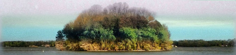 capturing the four seasons in one picture on an island lake springfield illinois 6 Capturing the Four Seasons in a Single Image
