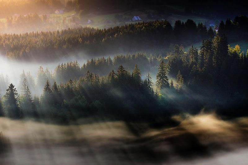 sun kissed landscape photos bathed in fog boguslaw strempel 3 Beautiful Sun Kissed Landscape Photos Bathed in Fog
