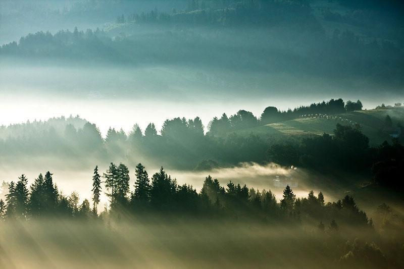 sun kissed landscape photos bathed in fog boguslaw strempel 5 Beautiful Sun Kissed Landscape Photos Bathed in Fog