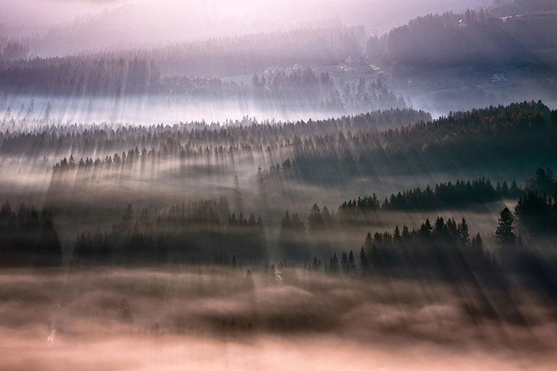 sun kissed landscape photos bathed in fog boguslaw strempel 6 Beautiful Sun Kissed Landscape Photos Bathed in Fog