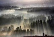 Beautiful Sun-Kissed Landscape Photos Bathed in Fog