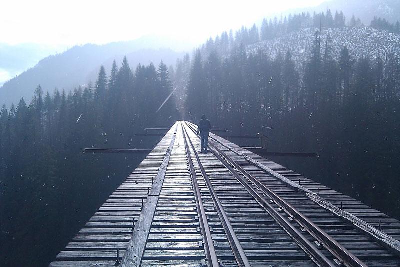 vance creek abandoned railroad bridge shelton washington Picture of the Day: Bridge to the Unknown