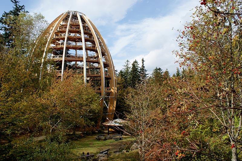 worlds longest tree top walk bavarian forest national park baumwipfelpfad 12 The Longest Tree Top Walk in the World