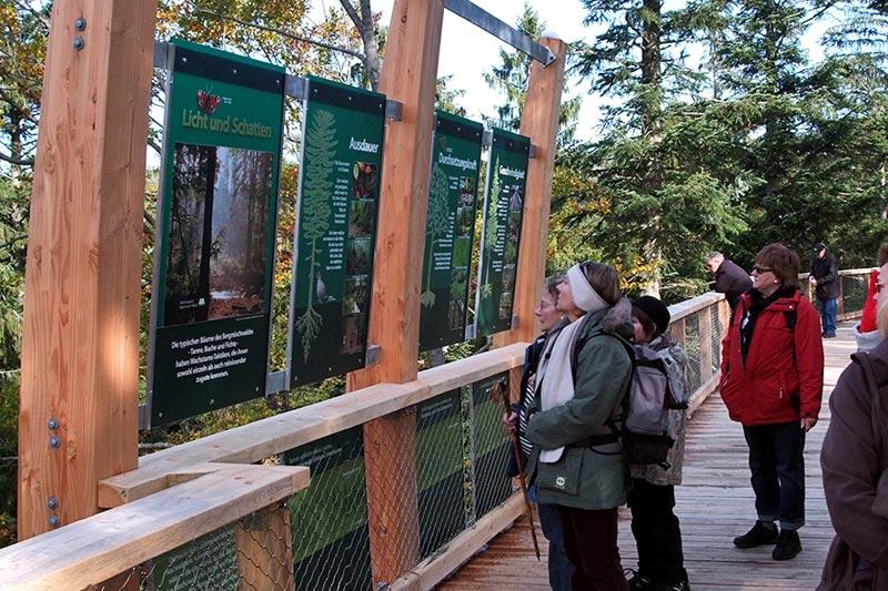 worlds longest tree top walk bavarian forest national park baumwipfelpfad 7 The Longest Tree Top Walk in the World