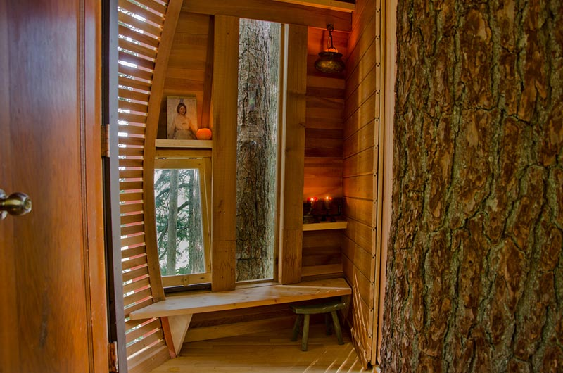 HemLoft secret treehouse hiding in the woods of whistler canada (12)