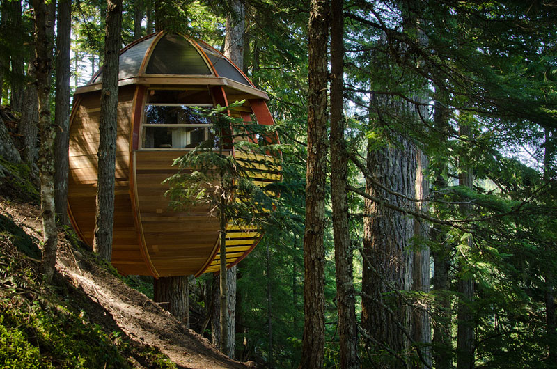 HemLoft secret treehouse hiding in the woods of whistler canada (15)