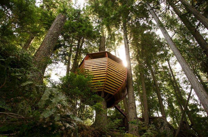 HemLoft secret treehouse hiding in the woods of whistler canada (3)
