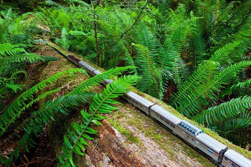 model train travels across canada jeff friesen (5)