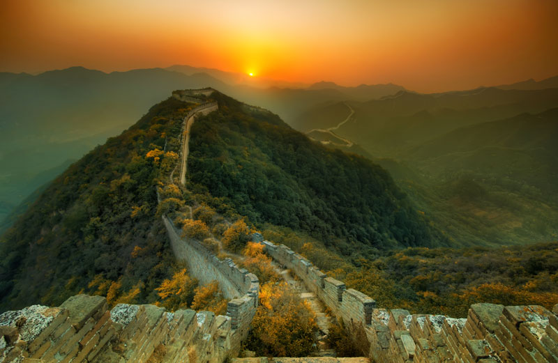 abandoned great wall of china nature overtaking growing over The Top 25 Pictures of the Day for 2013