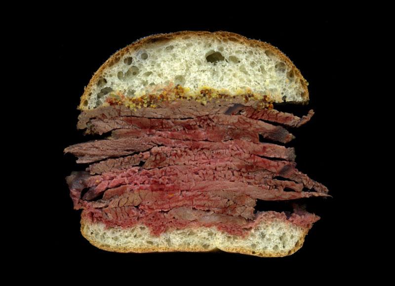 high quality sandwich scans by jon chonko scanwiches (9)