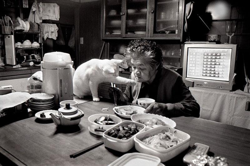 japanese grandma and her cat miyoko ihara (13)