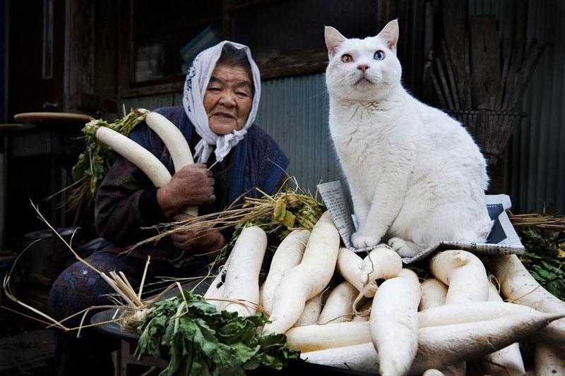 japanese grandma and her cat miyoko ihara (14)