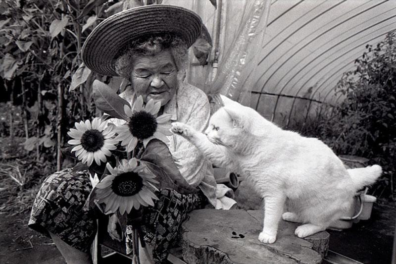 japanese grandma and her cat miyoko ihara (16)