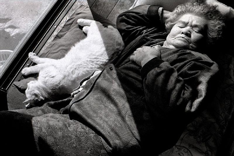 japanese grandma and her cat miyoko ihara (2)