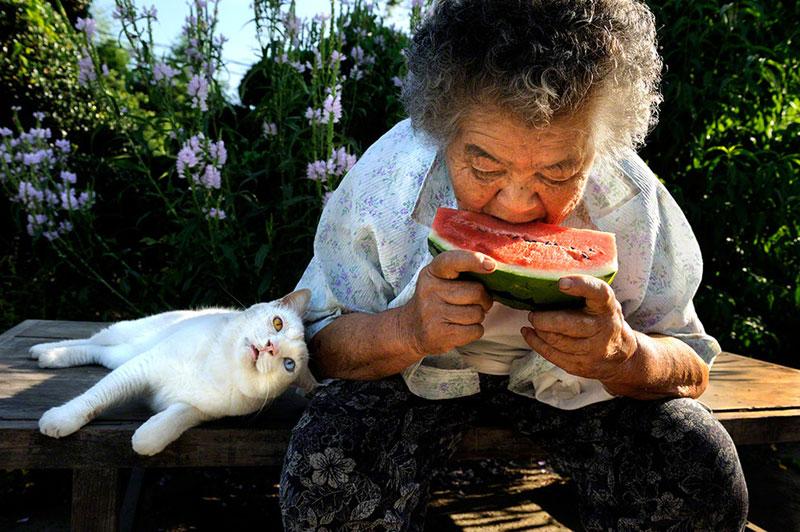 japanese grandma and her cat miyoko ihara (5)