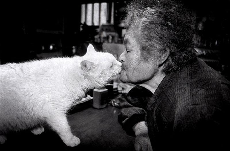 japanese grandma and her cat miyoko ihara (9)