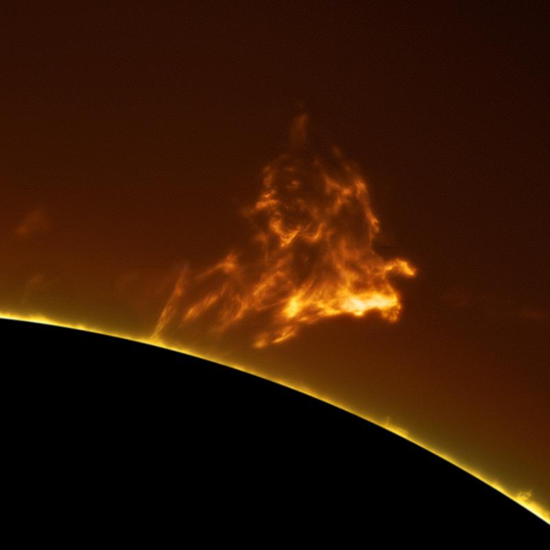 alan friedman sun photography (1)