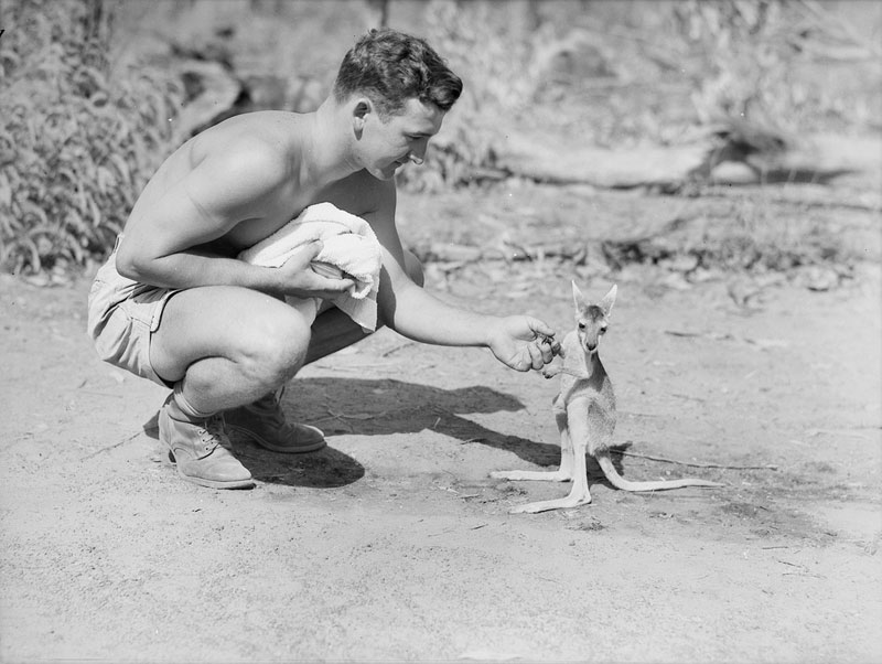 American-soldier-with-a-joey-1942