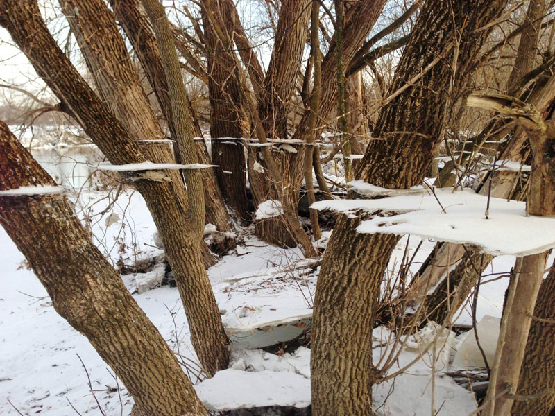 Picture of the Day: Trippy Ice Effect After Flood