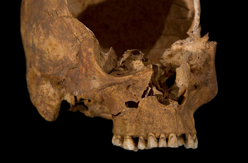 ing richard III skeleton bones body found university of leicester (1)