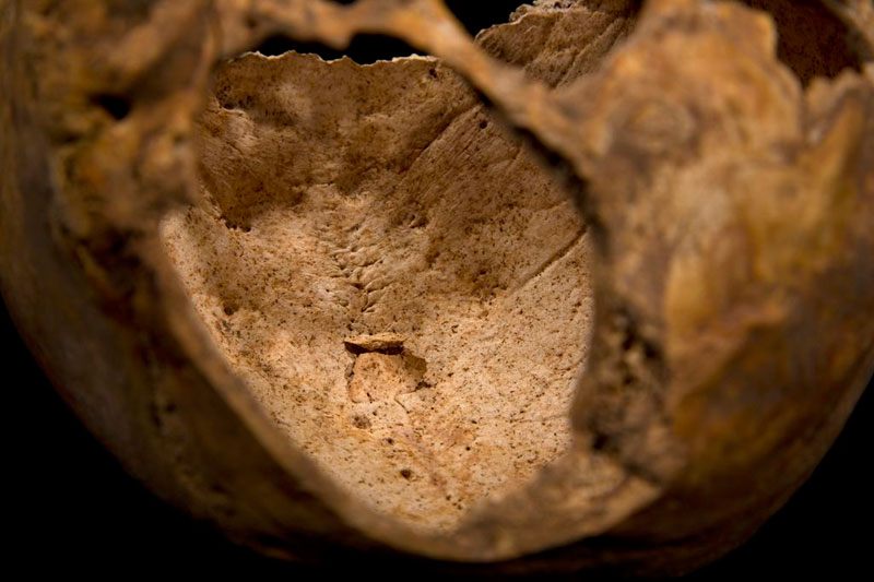ing richard III skeleton bones body found university of leicester (13)