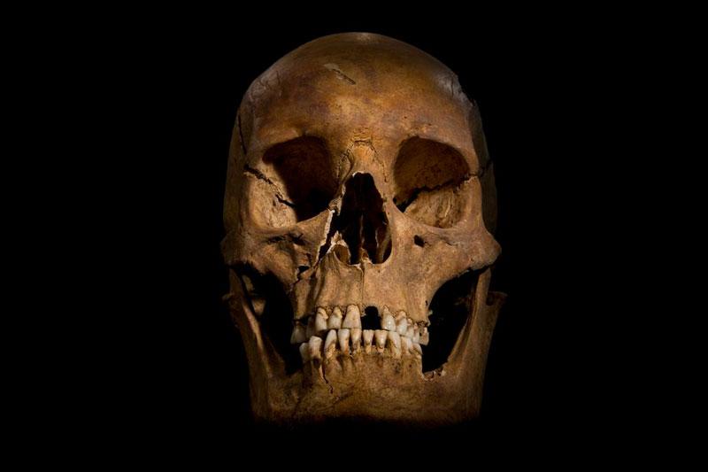 ing richard III skeleton bones body found university of leicester (14)