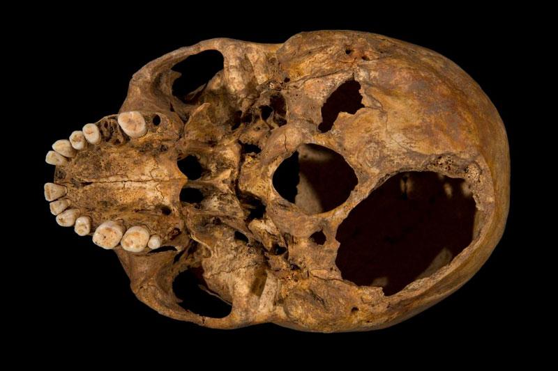 ing richard III skeleton bones body found university of leicester (16)