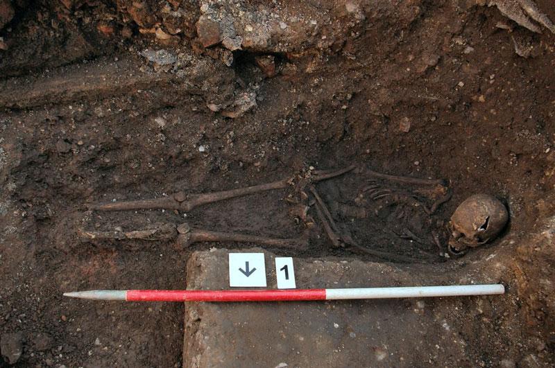 ing richard III skeleton bones body found university of leicester (17)