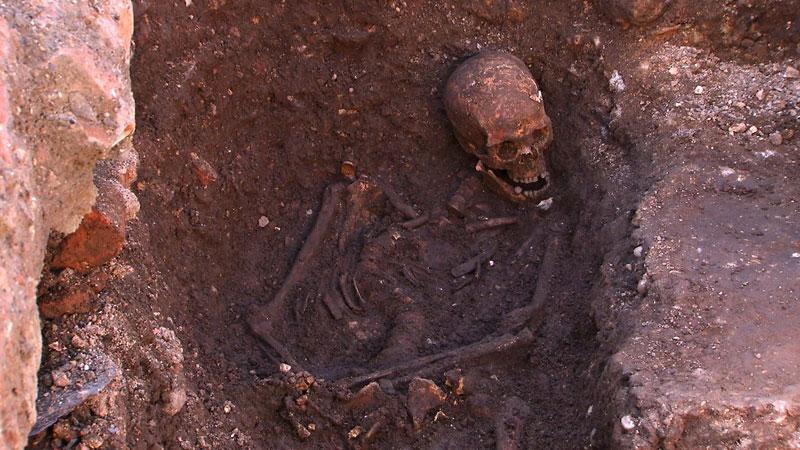 ing richard III skeleton bones body found university of leicester (6)