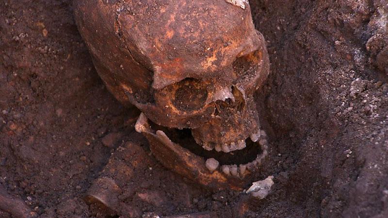 ing richard III skeleton bones body found university of leicester (7)