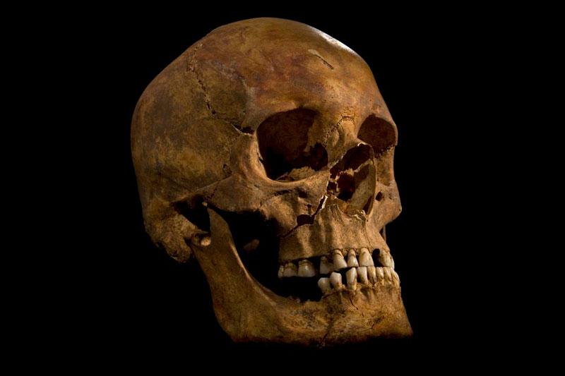 ing richard III skeleton bones body found university of leicester (8)